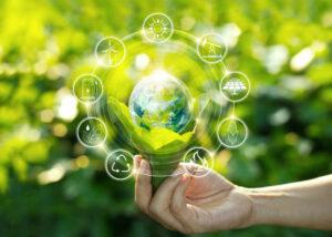 Sustainable Image